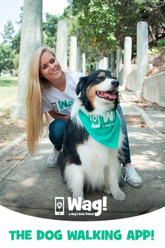 Bonded & insured dog walks with experienced dog walkers! Pet Dogs, Dog Cat, Doggies, Dog Food Comparison Chart, Cat Insurance, Dog Best Friend, Healthy Pets, Pet Life, Service Dogs