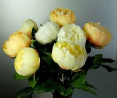 Eight Stems of Artificial Silk Cream Yellow and Apricot Peonies >>> Want additional info? Click on the image.