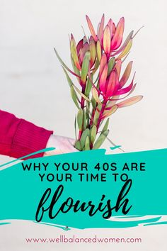 Don't believe the hype-- menopause symptoms may be dragging you down, but a little understanding of signs of perimenopause and your midlife body can change that! Midlife women harness the power to bring about change in the world! #midlifewomen #womenover40 #womenover50 #womenshealth #womenswellness #menopause #menopausetips #menopauserelief #menopausesolutions #perimenopause #perimenopausesymptoms #perimenopausehacks #midlife #midlifehealth #healthtipsforwomen #mindbody #selfcare Menopause Relief, Menopause Symptoms, Advice For New Moms, Baby On A Budget, Womens Wellness, Health Tips For Women, Babies First Year, Blog Love, Wellness Tips