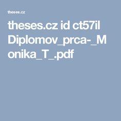 theses.cz id ct57il Diplomov_prca-_Monika_T_.pdf