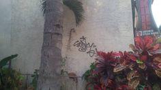 #graffiti #graffitiart #graff #hawaii #honolulu #waikiki #wall #palmtrees #kobe #japanese #restaurant #alamoana