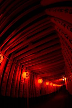 Torii gates by night, Fushimi Inari Shrine, Kyoto, Japan