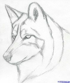 Husky