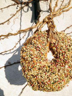 Bagel Bird Feeder - DIY