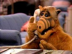 'Alf' - I loved this TV show. It was so the funny. And the film 'Project Alf' was great too. Donald Tramp, Paul Fusco, Arnold Et Willy, Pixar, Kickin It Old School, Back In My Day, Old Tv Shows, My Childhood Memories, Donald Duck