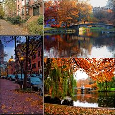 'cos I've never been to Boston in the fall!