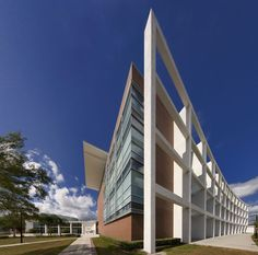University of South Florida College Building