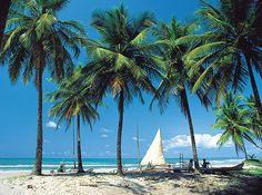 Bahia - Brazil