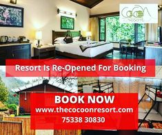 ❤️Book Now❤️ The Cocoon Resorts Opens With All The Safety Measures Of Covid-19, So Don't Worry Just Come Nainital And Enjoy Your Trip Here In Cocoon Resort. #BestResortInNainital #BestHotelInNainital #BestHotel #HotelInNainital #BestResort #ThecocoonResort #Cocoon #Contactus #Nainital #Pangot #Himalaya #uttrakhandtourism Nainital, Best Resorts, Camps, Cottage, Don't Worry, Book, Nature, Safety, Autumn