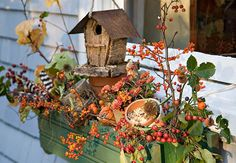 Window box with accessories
