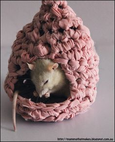 Up cycled rat, hamster, mice houses that can be crocheted out or recycled materials. Comes with pattern.