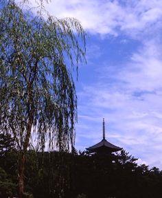 興福寺・五重塔 夏空