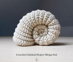 L'ammonite est en quelque sorte la star des fossiles. Après les célèbres moules de la braderie de Lille, place à un nouvel animal aquatique désormais disparu et qu'il est possible de re…