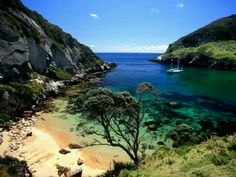 I'm going to be here in 4 days! Great Barrier Island New Zealand!