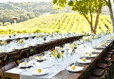 21 Reception Photos That Will Have You Dreaming of an Outdoor Wedding | Photo by: Mike Larson Photography | TheKnot.com