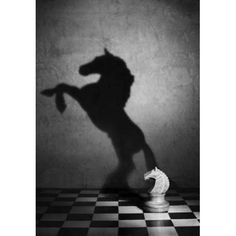 Rule of Thirds Photography black and white wonderful style by Victoria Ivanova still life Soul of the mustang Shadow Photography, Conceptual Photography, Still Life Photography, Creative Photography, Art Photography, Street Photography, Illusion Photography, Photography Hashtags, Photography Equipment