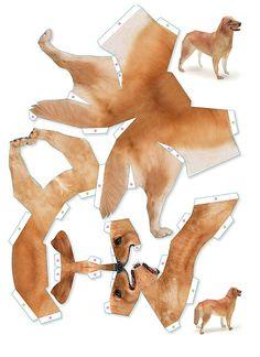 Paper Dog