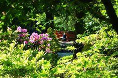 http://www.parisianshoegals.com/2014/05/semaine-japonaise-paris-village-et.html
