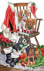 Cavalier King Charles Christmas cards are 8 x 5 and come in packages of 12 cards. Christmas Puppy, Christmas Animals, Christmas Cats, Merry Christmas, Christmas Music, Xmas, Vintage Christmas Images, Christmas Pictures, King Charles Spaniel