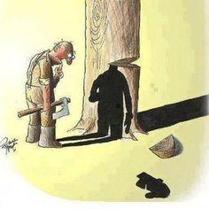 阮强 - Great analogy to the dangers of deforestation.