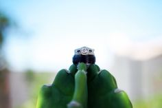 wedding rings on top of a cactus | Molly McElenney Photography (scheduled via http://www.tailwindapp.com?utm_source=pinterest&utm_medium=twpin&utm_content=post117903499&utm_campaign=scheduler_attribution)