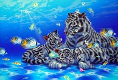 Mother ocean 8 - White tiger, Fish by Kentaro Nishino