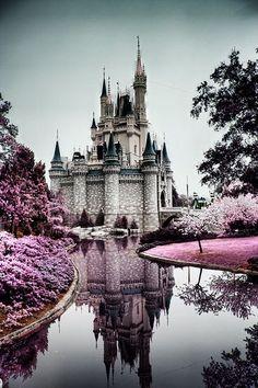 Disney Land - Dream World - Love - Beautiful