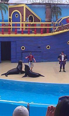 The Clyde & Seymore Take Pirate Island show at Sea World, Orlando