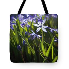 "Early Spring Blue Flowers Tote Bag by Joy Nichols (18"" x 18"").  The tote bag is machine washable, available in three different sizes, and includes a black strap for easy carrying on your shoulder.  All totes are available for worldwide shipping and include a money-back guarantee."