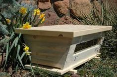 Top bar beehive is simple and economical to build, and also more sustainable for your bees. Supposedly there are fewer issues with varroa mites. This photo links to BackYardHive.com.