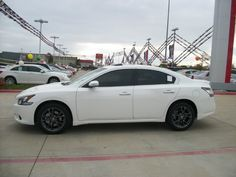 Paint Ideas For Nissan Maxima White And Black