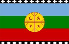 Asocian riesgo de cáncer de vesícula con ascendencia mapuche | Patagonia