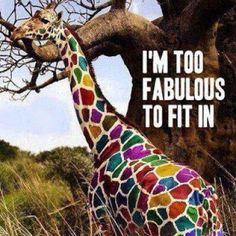 Its not a baby giraffe sarah.its a rainbow giraffe! Baby Animals, Cute Animals, Colorful Animals, Colorful Food, Safari Animals, Wild Animals, Foto Poster, Belle Photo, Animal Kingdom