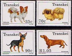 Transkei 1993 Dogs Set Fine Mint SG 297 300 Scott 283 6 Other African and British Commonwealth Stamps HERE!