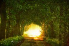 Photo Towards the Light par Lars van de Goor on 500px