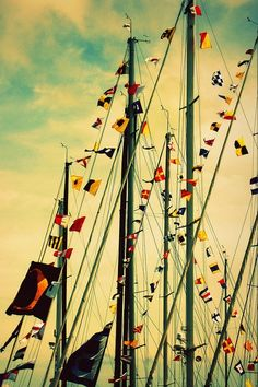 sail flags for sale