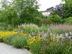 Le jardin Hermannshof en juin - Blog Promesse de fleurs