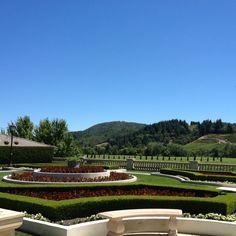 Ferrari Carano Winery Napa Sonoma, Sonoma County, California Wine, Wine And Spirits, Wine Country, Places Ive Been, Ferrari, Golf Courses, October
