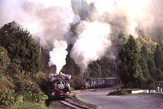 世界の蒸気機関車<インド(ダージリン・ヒマラヤン鉄道の旅:下)>