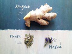L'articolo Tisane: ricette perfette per ogni stagione è stato pubblicato su Vegolosi, magazine di cucina e cultura veg. Per un momento di relax o bevanda per risolvere qualche piccolo acciacco stagio