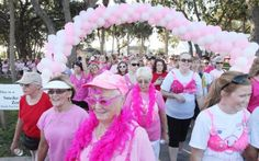 Photo Gallery: Making Strides Against Breast Cancer at Riverview Park