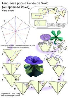 Diagram BASE Is MatoCorda Viola Flowers