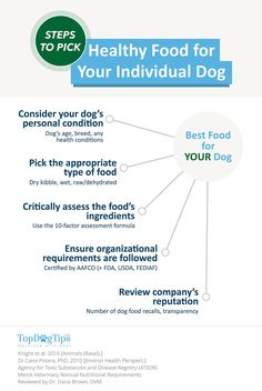 Organic food has many benefits over traditional processed foods, but did you know the best organic dog food brands may add years to your pet's life? Best Organic Dog Food, Best Dry Dog Food, Benefits Of Organic Food, Top Dog Food Brands, Healthy Dog Food Brands, Top Dog Foods, Dog Health Tips, Dog Nutrition, Dog Diet