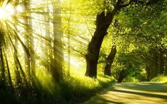 La natura della luce (prima parte)