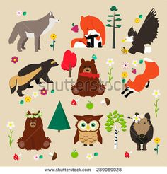 Set of woodland. Some trees: birch, pine, fir; flowers, mushroom and animal: wolf, fox, eagle, wolverine, bear, owl, boar. Vector illustration.