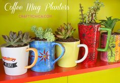 Coffee Mug Planters! Great way to recycle cute cups and use them as patio decor! http://www.craftychica.com/site/2014/06/coffee-mug-planters/?utm_campaign=coschedule&utm_source=pinterest&utm_medium=Kathy%20Cano-Murillo%2C%20The%20Crafty%20Chica%20(Crafty%20Chica%20Tutorials)&utm_content=Coffee%20Mug%20Planters