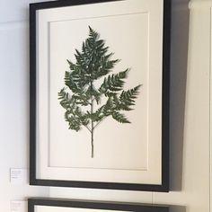 custom framed on white linen, our Bracken Fern goes with any interior.  #highstreetmarket #framed #fern #botanical #customframed #homedecor #green #chic