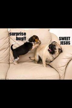 suprise hugs