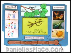 Christian homeschool lessons about bugs and insects. Walking Stick Bug, Walking Sticks, Insects For Kids, Bugs And Insects, Jungle Theme Activities, Ant Crafts, Montessori Science, Science Lessons, Life Science