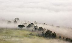 Sea of Clouds by Nieto